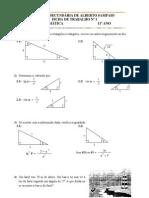Matemática - Trigonometria - FT 1 Resolucao de triangulos rectangulos