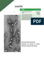 Partie 2b Les Toxines Bactériennes Pour Projection 2020-2021