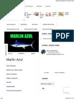 Marlin Azul - Saiba um pouco sobre este peixe .