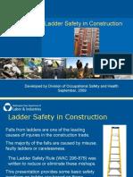 ConstructionLadderSafety
