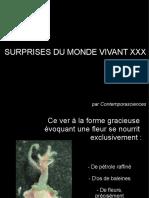 Surprises du monde vivant XXX