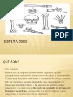 sistema-oseo