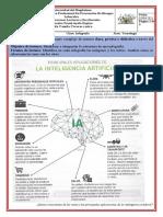 Infografía inteligencia artificial (1)