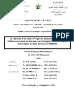 Document 2015