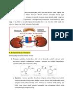 Revisi Materi Kelenjar Adrenal