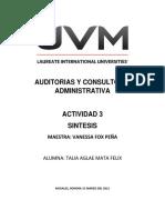 Act 3 Sintesis Auditorias y Consultoria Administrativa Talia Mata