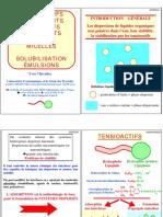 Poly M2 Formulation YvesChevalier