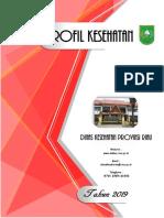 Profil Kesehatan Provinsi Riau 2019 (1)