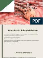 Generalidades de Plathelmintos Taenia solium y Taenia Saginata
