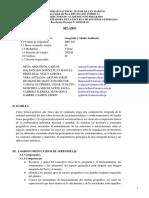 Silabo Geografía y Medio Ambiente 2020 I APROBADO