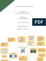 Mapa Mental Genero y Sexualidad, Orientación Sexual (1)