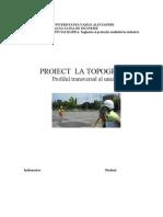 proiect topografie