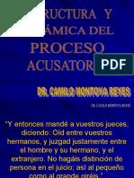 Estructura y Dinámica Del Proceso Acusatorio (2)