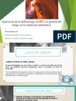 AMFE (3)