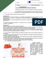 2º Ficha_Sistema nervoso