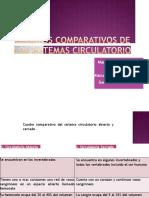 cuadroscomparativosdelossistemascirculatorio-140303064556-phpapp02-convertido