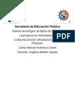 carlos_manuel_aramburu_clavel_tema_1_comportamiento_orgnaisacional_ENSAYO