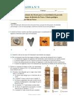 Ficha Formativa Nº 5