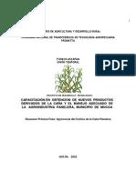 Agronomia cultivo de la caña panelera