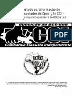 guia_de_estudos_cci