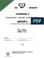 Apnp 4 - Carlos - Ciclo 4