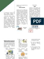 Medidas Higienicas en La Preparación de Alimentos Nutritivos