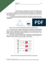 6 - Microestrutura