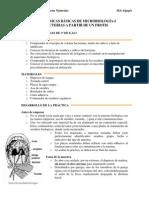 TECNICAS DE CULTIVO OBJETIVOS