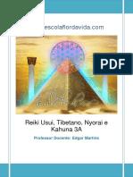 Edgar Martins - Reiki Usui, Tibetano, Nyorai e Kahuna - Nível 3 (34 Páginas)