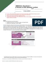 Practical_2_worksheet__online___1_.docx