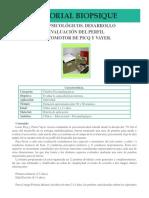 ATD15-Evaluacion-del-Perfil-Psicomotor-de-Picq-y-Vayer