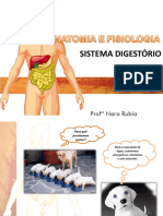 AULA 8 Sistema Digestório-convertido