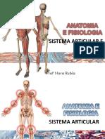 AULA 3 Sistema Articular e Muscular-convertido