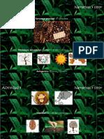 PDFDocumentoACT4