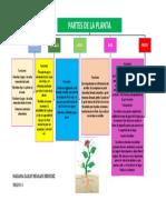 PARTES DE LA PLANTA MARZO 10