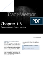 FOREX - FUNDAMENTALS MAKE CURRENCY PAIRS MOVE (1.3)