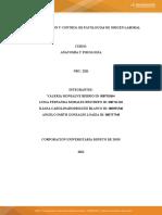 Plantilla de Plan Grupo 3 (1) (3) (3)