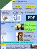 PPT  RECOLECCION DE DATOS