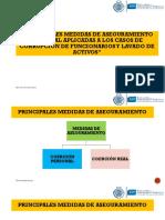 5931 Principales Medidas de Aseguramiento Procesal Aplicadas a Los Casos de Corrupcion de Funcionarios y Lavado de Activos