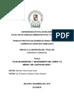 Plan de Marketing y Mejoramiento Del Vivero La Hiedra Del Canton Milagro. Enpastar