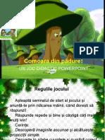 Comoara din pădure