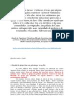 246 - 29.06.2010 - Na Concelebração Eucarística e Imposição dos Pálios aos Novos Arcebispos Metropolitanos na Solenidade dos Santos Pedro e Padro