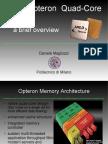 Pres_Opteron Slides_PDF_vers_Magliozzi