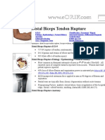 Distal Biceps Tendon Rupture