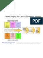 Choice of Company Strategy Diagram
