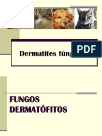 Dermatites fúngicas