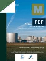 A-Dimensao-do-Setor-Sucroenergetico