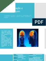 Neuroeducação e Aprendizagem