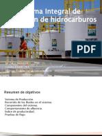 PP Produccion de HIdrocarburos Zakia M 2021
