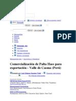 Comercialización de Palta Hass para exportación - Valle de Casma (Perú) - Monografias com